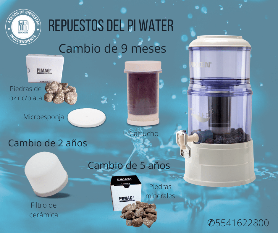 Mantenimiento pi water nikken